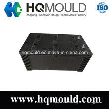Molde de injeção plástico da caixa do recipiente da alta qualidade