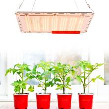 Ультрафиолетовые платы MeanWell UV Quantum lm301b lm301H лампы для выращивания растений