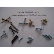 China Schraubenzieher 2mm Edelstahl Blechschraube