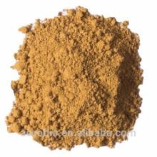Hochwertiges 100% natürliches organisches Austernpilz-Auszug-Pulver