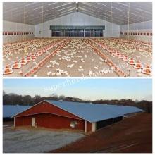 Construcción automática de granja de pollos de engorde con kits de podología
