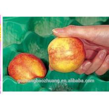 Les récipients en plastique bon marché formés par vide jetables de thermoformage et les plateaux d'empaquetage pour le fruit