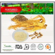 Hohe Qualität 100% natürliche Sibirische Ginseng Extrakt Pulver in Groß Eleutheroside B + E 1,5%