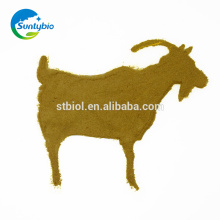 China Lieferant Feed Hefe Pulver 60% für Tierfutter-Zusatzstoffe