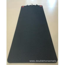 TPE single color sports mat