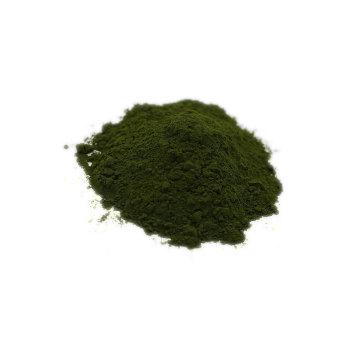 pure chlorella raw powder