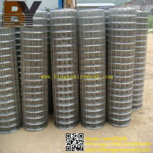 Gopher Basket Stainless Steel Welded Wire Mesh