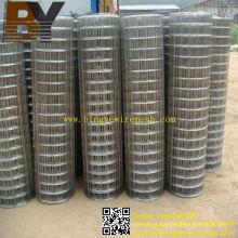 Gopher Basket Stainless Steel Welded Wire Mesh