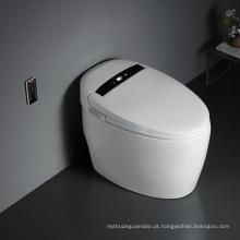 Novas funções automáticas sanitário elétrico inteligente