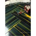 Kommerzieller 12.3mm Spiegel-Teakholz-wasserbeständiger lamellierter Bodenbelag