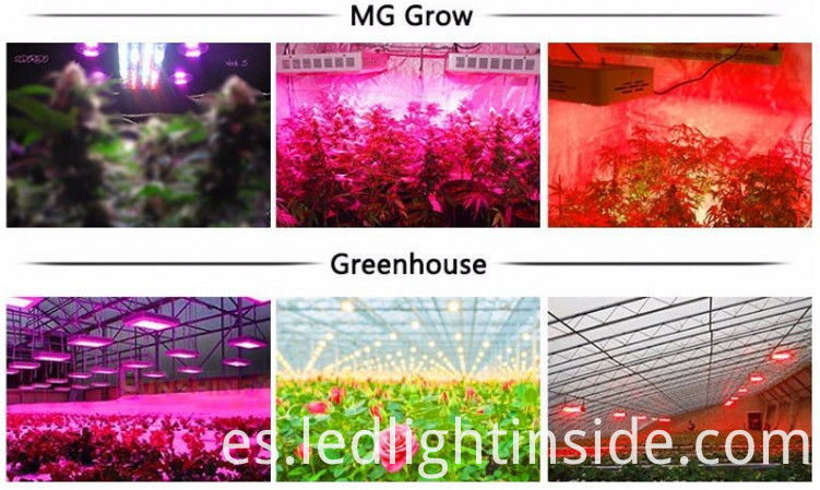 Lens LED Grow Light