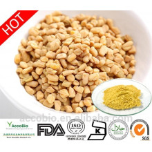 100% Natural High Quality Fenugreek Seed Extract Powder 4-hydroxyisoleucine 60% in Bulk