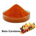 Buy online active ingredients beta-Carotene powder
