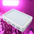 Best High Power LED Grow Lights High times