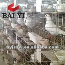 Diseño de jaulas para palomas