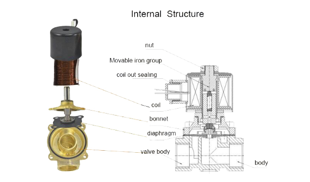 Internal Structure of 2W025-08 solenoid valves