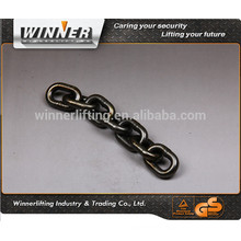 Heavy Duty Black Industrial Chain