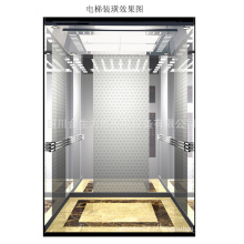 Ascenseur de passager de Fujizy avec 800kg / 1.5m / S