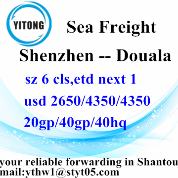 Shenzhen International Sea Freight Versand nach Douala
