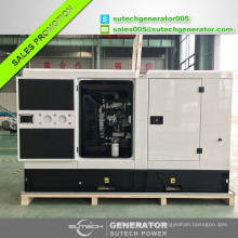 25kva diesel generator set powered by engine 1103A-33G made in UK