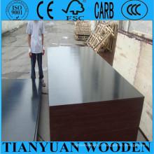 O filme enfrentou a madeira compensada do molde do obturador da madeira compensada / 1220 * 2440mm