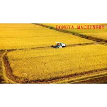 DONGYA 6N-40V 0002 Novo design Vibratory screenrice moinho de máquinas com bom preço para uso doméstico