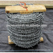 High Quality Barbwire Blade mesh/Barbed wire strand/Barbed wire fence