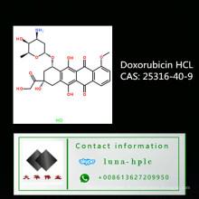 CAS: 25316-40-9 99% Assay Hot Sell Doxorubicin Hydrochlorid