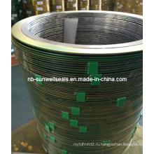 Хорошее качество спиральных прокладок из графита 316 (L)