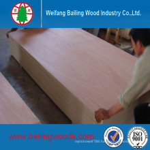 China Manufacture Door Size Plywood with Good Price