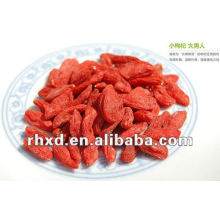 Certificated Dried gojiberry to Europe