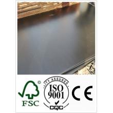 21mm Bau Sperrholz mit schwarzem Film (HBC001)