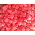 frozen foods frozen vegetables frozen fruits frozen raspberry