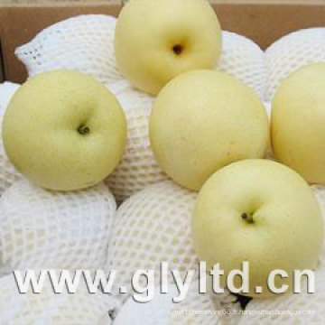 Nouvelle récolte fraîche Golden Pear