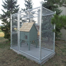 Chain Link Wire Mesh Fence Cage