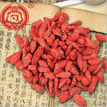 O rico em nutrientes Goji Berries Fruits Wholesal