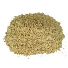 Gengibre em pó desidratado e seco ao ar