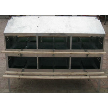 Egg Nest Box for Poultry House (criador)