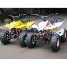 Квадроцикл, оснащенный мощным двигателем воздушного охлаждения 110cc ATV (ET-ATV011)