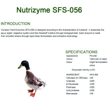 Complex enzymes for animal feed	SFS-056