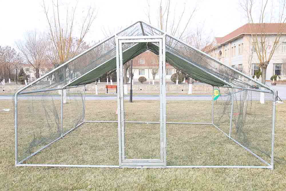 chicken kennel cage