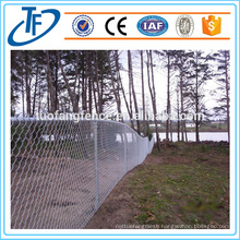 Chain Link Fence With Accessories Used for Poultry Farms in Anping (China Supplier)