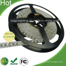 2015 New Cw and Ww in One LED Cct Adjustable 3528 LED Strips