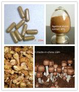 Agaricus Blazei Extract, Polysaccharides 30%, 40% by UV