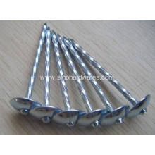 Customized Supplier for China Leading Galvanized Steel Nails, Zinc Galvanized Roofing Nails, Square Boat Nails, Common Nails, Roofing Nails, Framing Nails, Concrete Nails Factory Hot Sale Roofing Nail export to Saint Lucia Supplier