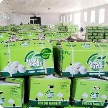 Agora produto agrícola da China Alho branco normal fresco