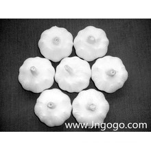 Nueva cosecha de exportación Good Quality White Garlic