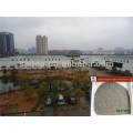 China green tea Manufacturer tea 9366 in sacks