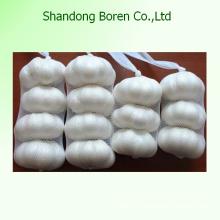 2015 китайский свежий размер 5.5cm Нормальный белый чеснок