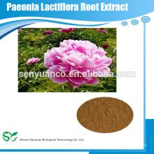 Extracto de raíz pura extracto de paeonia lactiflora